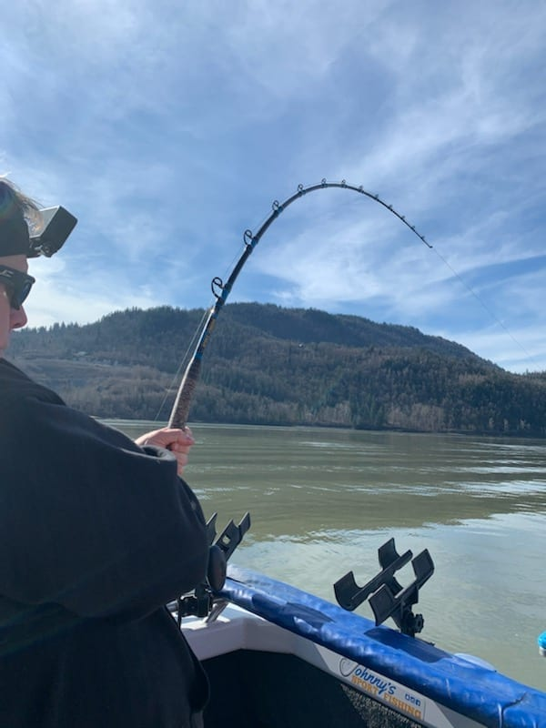 sturgeon fishing fraser river march 2021